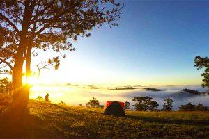 Top 8 địa điểm camping chill nhất Đà Lạt năm 2020